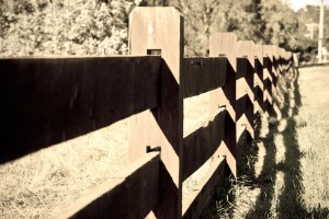 Fence in Gisborne South - Antique Light version